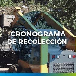 destacadorecoleccion-06